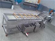 红薯/地瓜清洗机 304食品级不锈钢 包邮厂家直销  红薯去杂质清洗机