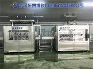 東泰博銳直銷武漢盒裝龍蝦醬料灌裝機精度高
