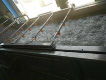 鸿盛-供应QX-3000小龙虾清洗机