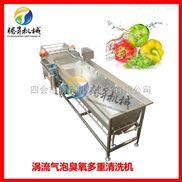 TS-x680-果蔬清洗机 净菜生产设备 连续式豆芽洗菜机