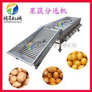 TS-F250-腾昇厂家 水果分选机 柑桔香橙分级筛选机