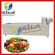 TS-X300-大型洗菜机 芹菜洗菜机桔子清洗机