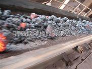 玉林耐高温输送带生产厂家