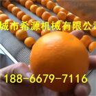 洗橙子机器