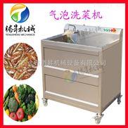 TS-AZ-蔬菜水果果蔬单杠清洗机气泡冲洗