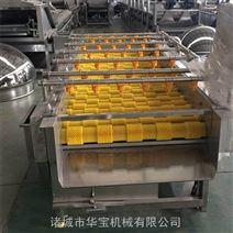 华宝牌果蔬加工设备-葡萄清洗机