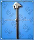 供應耐磨熱電偶傳感器WRNM-230