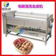 广东厂家供应紫薯毛刷清洗机 土豆去皮机 脱皮清洗机果蔬脱皮机