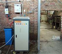 六盘水电加热蒸汽发生器