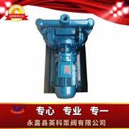 衢州市铸铁电动双隔膜泵配橡胶膜片DBY-25