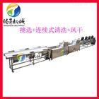 腾昇机械厂专业定制果蔬加工生产线