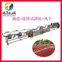 厂家直销 中央厨房净菜加工设备 蔬菜清洗风干生产线