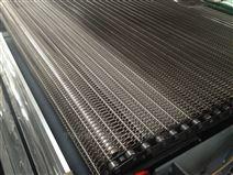 玉米粒速冻隧道不锈钢网带