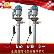 防爆电动抽液油桶泵