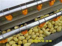 土豆毛辊去皮清洗机