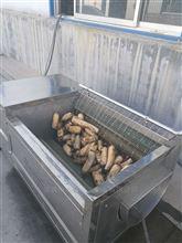 河北甘薯毛辊去皮清洗机