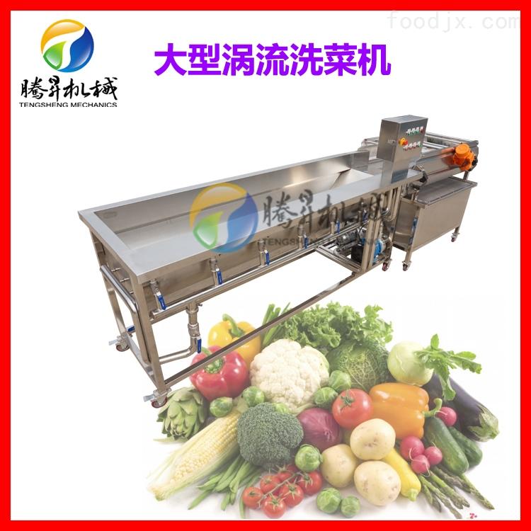 厂家定制蔬菜涡流清洗机 多功能清洗设备