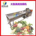 TS-X680食堂蔬菜配送净菜加工成套设备 涡流清洗机