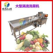 电动果蔬豆芽清洗机 涡流洗菜机 生产线设备