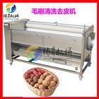 土豆削皮机 地瓜清洗机 毛刷清洗去皮机厂家