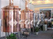 CGET-微型自釀啤酒設備