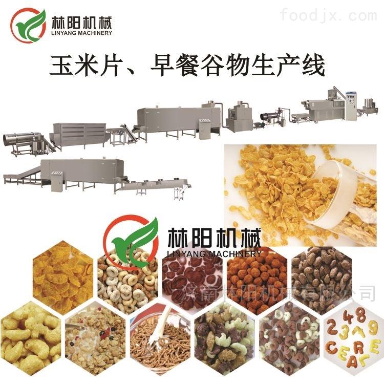 苦荞麦片生产线