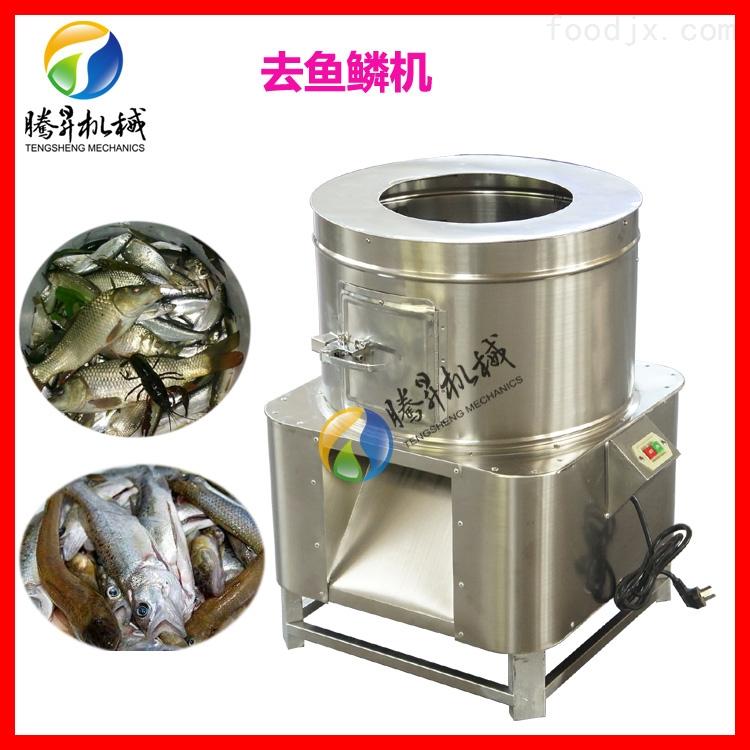 高速去鱼鳞机 适合单位食堂 市场 水产加工