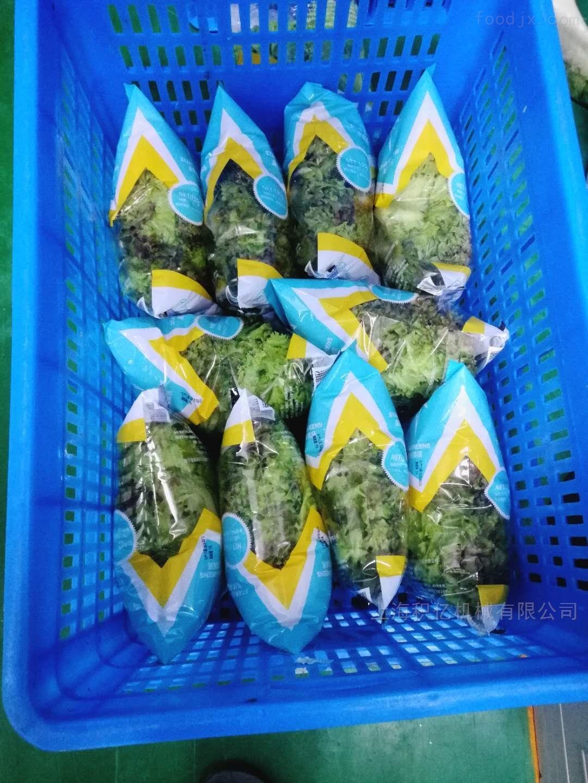 袋式果蔬气调保鲜包装机