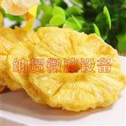 上海納賀微波真空低溫干燥機 菠蘿水果干燥