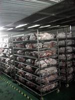 HT-TJKG10T肉类低温解冻库供应商