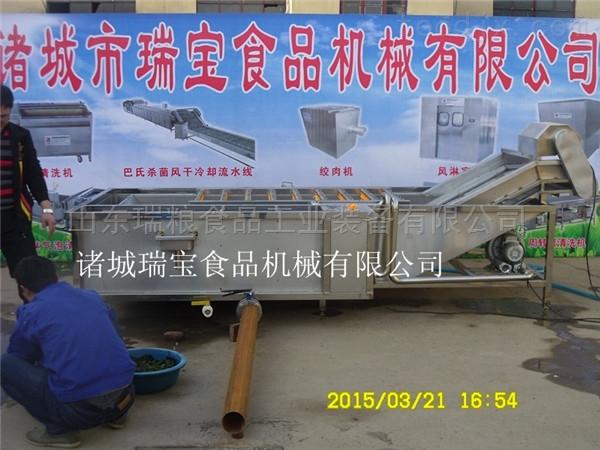 定制氣泡式蔬菜清洗機 果蔬加工設備 廠家直銷