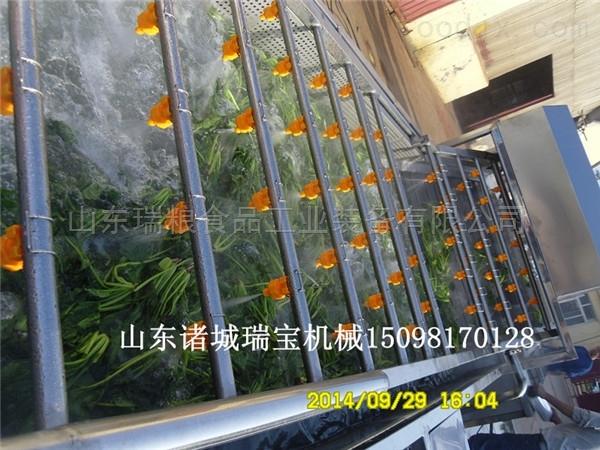 定制廠家直銷多功能蔬菜清洗機