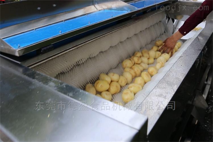 DY-1800-蔬菜加工设备土豆清洗去皮机德盈机械