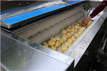 DY-1800蔬菜加工设备土豆清洗去皮机德盈机械