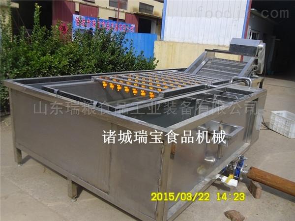 定制廠家熱銷蔬菜清洗機 噴淋式氣泡機