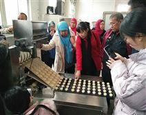 厂家直销 桃酥糕点生产线 酥性饼干成型机