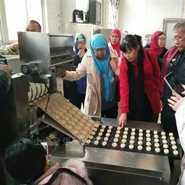 HQ-TSJ400~600厂家直销 桃酥糕点生产线 酥性饼干成型机