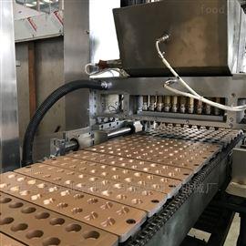 全自动多功能软糖糖果浇注生产线