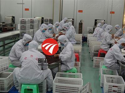 生产工厂红枣清洗机流水线定制设备