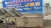 厂家直销水果猕猴桃气泡翻浪清洗机上门安装