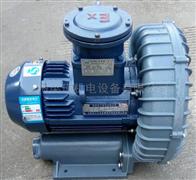EX-G-10变频曝气防爆高压鼓风机