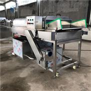 红枣毛辊清洗机大枣加工设备生产厂家价格
