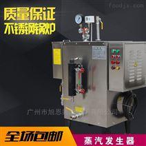广东旭恩24kw小型电加热蒸汽发生器