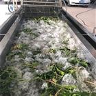 MK-QP22-5000蔬菜气泡清洗机生产厂家