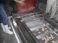 BF100带鱼镀冰衣机