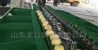 XGJ-NM四川柠檬分选机设备