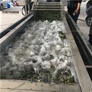 百合清洗机 中草药全自动清洗设备流水线