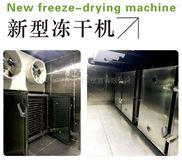 1平方米榴莲冻干机 真空冷冻干燥机冻干设备