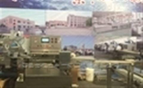 雪糕自动包装机-青岛华德立中一精工机械