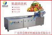 TS-X300-腾昇牌柑桔橙子清洗机 多功能气泡洗菜机